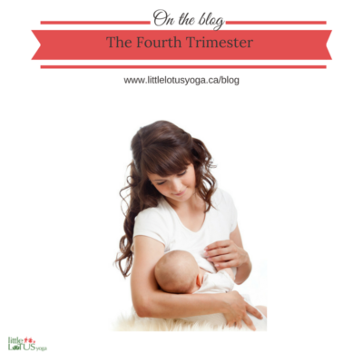 "The ""Fourth Trimester"" – What can we really expect?"